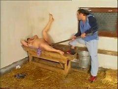 Farm ausgereift anal