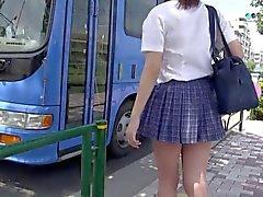 Bus 1. N15