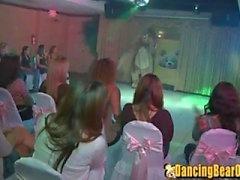 Dancing Bear Partij voor de Douche van het Huwelijk