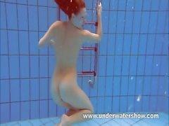 Redheaded Katka sualtı oynuyor