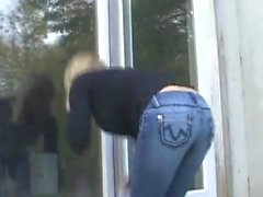 Fönster renare