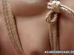 Japanese stunner tied up and played with