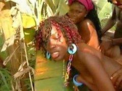 Африканская Республика Х Sauvage 6