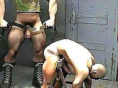 In 3D del muscolo gay con il Huge Dicks !