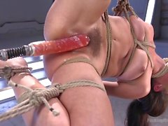 Tied Up And Tormented