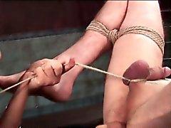 Uomo asino delle schiave del sesso e giocherellò ugelli tagliato