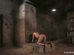Sex And Submission Sasha Grey