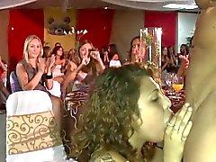 Festeiros europeus desobediente amam de strippers