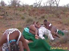orgia di sesso estremo safari africano