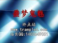Nylon chino Trample y Adoración