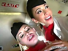 Passeggeri Sbattere Due Slut Flight Attendants