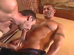 Hardcore Muscled gayBear Cocks