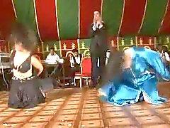 Baile Arábica atractiva