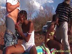africano orgía safari sexo en el segmento de la naturaleza