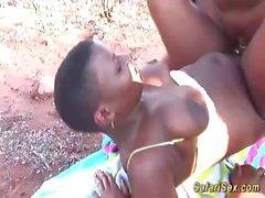 afrikanische safari sex orgie im natursegment