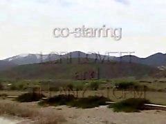 Backdoor Bräute # zwei Flitterwochen - 1986