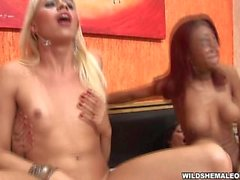 Redhead ebony T-girl sucking plump shecock shemale orgy cumshots