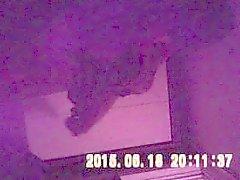Bumsen einen koreanischen Prostitute zu Hause