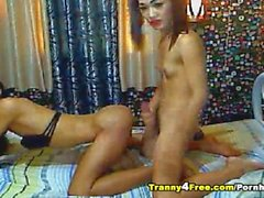 Two Horny Tranny Anal Fucked Till Cum