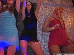 Wild Sex Party Met Cock Sucking