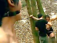 Två tonåringar anföll i skog