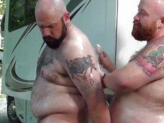 Camping engorda oso engullir y raza al aire libre