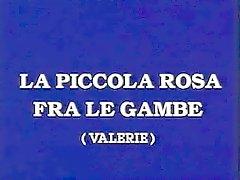 Klassista italialaista - La Piccola Rosa tra le GAMBE