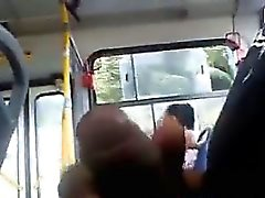 Выявление Мои петух на автобусе