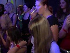 Wilde Gruppe Hardsex-Party