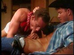 Cowboy tape de son meilleur ami