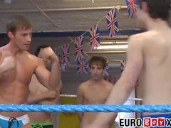 Yakışıklı genç erkekler onların brawn ringde test