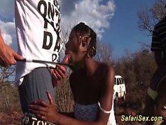 Açık afrikalı safari seks partisi