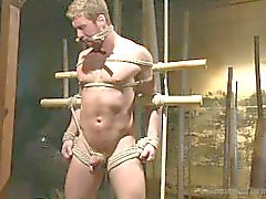 Connor Maguire ottiene il suo asino violato - Scene 1 Anteprima