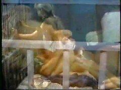 Sex vankilassa