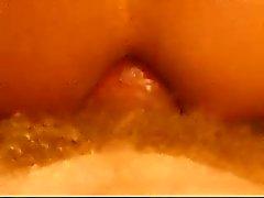 Mooie close-up van een ezel neuken , maar deze keer bareback .