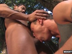 Big dick gay outdoor sex with cumshot