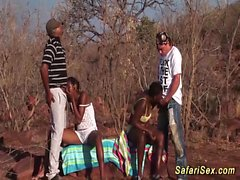Açık hava afrikalı safari orgy