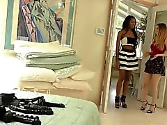Interracial Lesbiennes Stella Cox et Nadia Jay