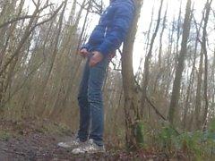 когда я нахожусь в лесу
