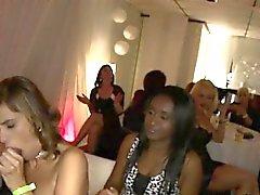 Sluts Corner Strippers Big Cock At A Wild Event