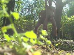 Cruising in the woods
