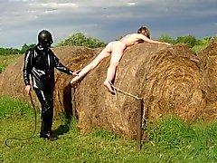 steelpain - çiftlik