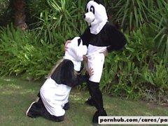 Bridgette B e Alex S del panda di stile