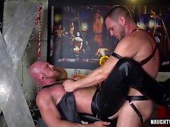 Karvainen homo peräaukon rengas, jolla on sika