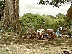 Perkipoltettu magnesiumoksidi - Safari Park