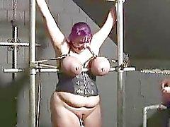 BBBW Kotirouva Ann rangaistaan lutka vankilaan