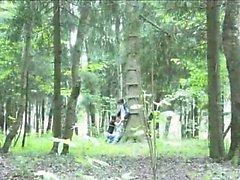 Un'avventura pompino della foresta