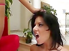 Sorte Location Rosafarbenem Und Taryn Thomas In A Hot Cum Swap
