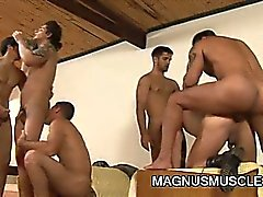 Мышца шипованные солдат , имеющие групповой секс