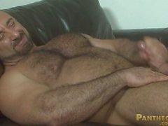 Dei muscoli dell'orso rocciosa LaBarre del Po FV